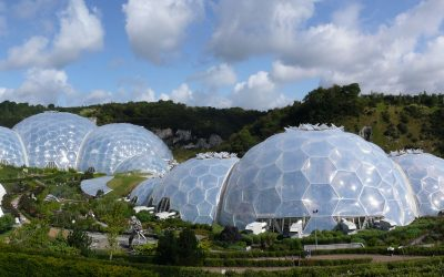 Trip to the Eden Project